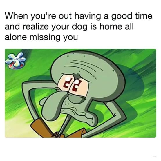 Ohh who lives off the internet to browse spongebob memes