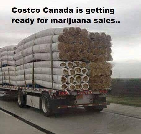 Who else loves Costco