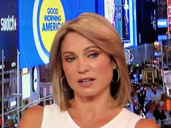 ABC's Amy Robach had the Epstein story 3 years ago