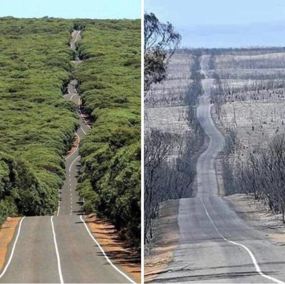 Kangaroo Island in Australia. Before and After