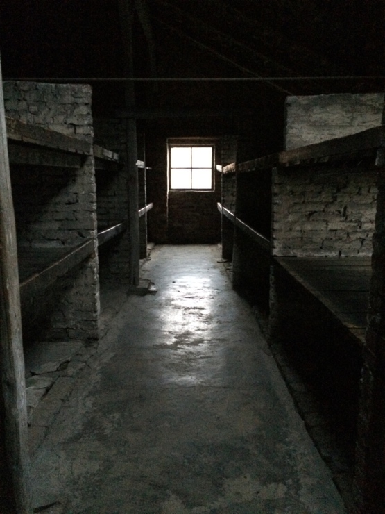The day i visited Auschwitz