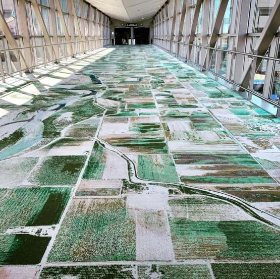 My local airport has carpets that are arieal views of the local region