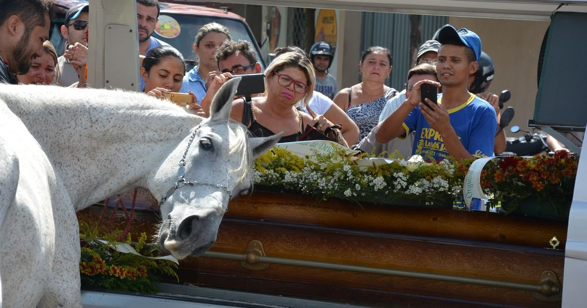 Brazilian horse Sereno at the funeral of his owner and best friend, cattle herder Wagner Figueiredo de Lima, killed in a motorcycle accident