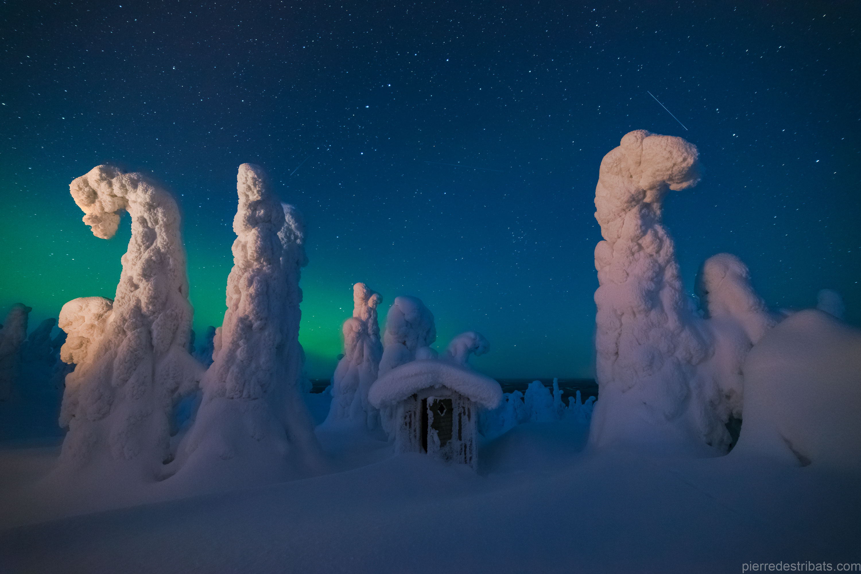 Sentinels of a Northern Sky
