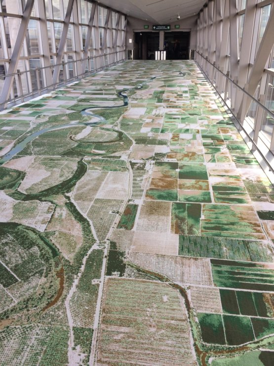 this carpet is based off of aerial photographs trending
