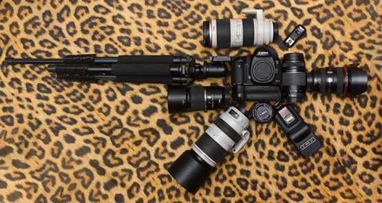 This what i use to shoot Wildlife - Trending on Reddit