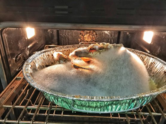 You guys ever get drunk and forget a turkey in the oven for
