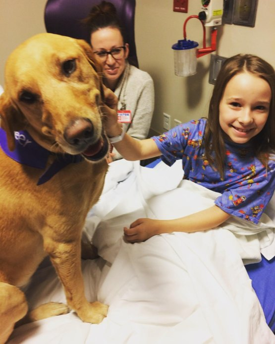 Our daughter was visited by Maddie, a therapy dog, before her (successful) surgery at Phoenix Children's Hospital ... this dog helped all of us more than she will ever know ... she's not a good girl, she's a great girl