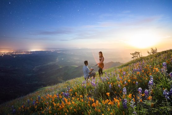 Proposing To My Girlfriend On A Flower Covered Mountain At Sunset