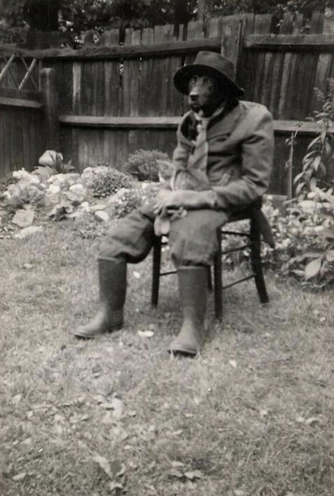 A dog dressed as a man with a cat on its lap - 1950