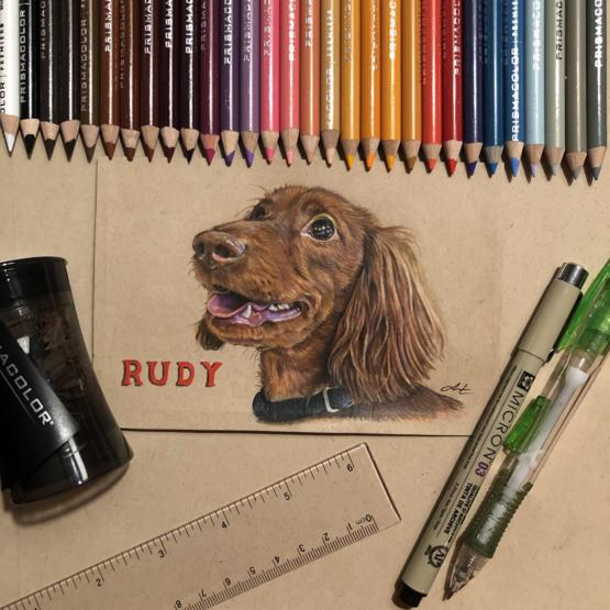 4 days + 30 colored pencils = 1 finished portrait of a very good boy.