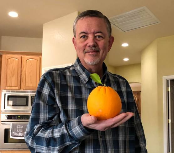 My Dad's favorite navel orange this year from the backyard tree.