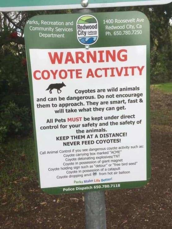Read the fine print on this coyote warning sign.