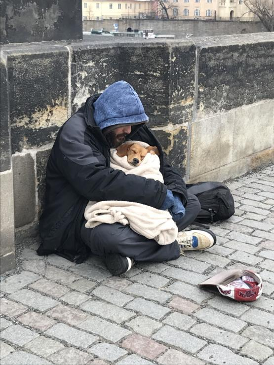I saw this man and his dog whilst I was crossing a bridge in Prague. It was -4c out and he used his only blanket to wrap up the dog. A true act of love.