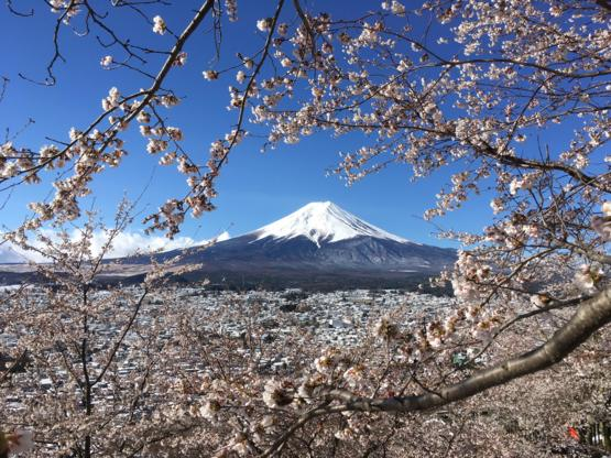 Pic I took of Mt Fuji the other day