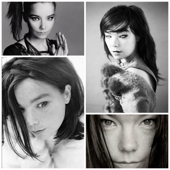 Björk, the Icelandic princess
