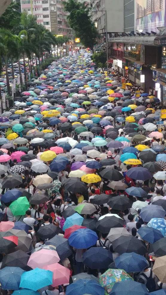 1 million protested against the amendment of extradition law which enables the Chinese government to arrest dissidents in Hong Kong on 9 June. That was about one-seventh of the population. The Hong Kong government still works against the people's will aft
