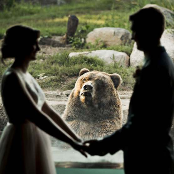 They got married at the Zoo And this bear had an interesting first look reaction