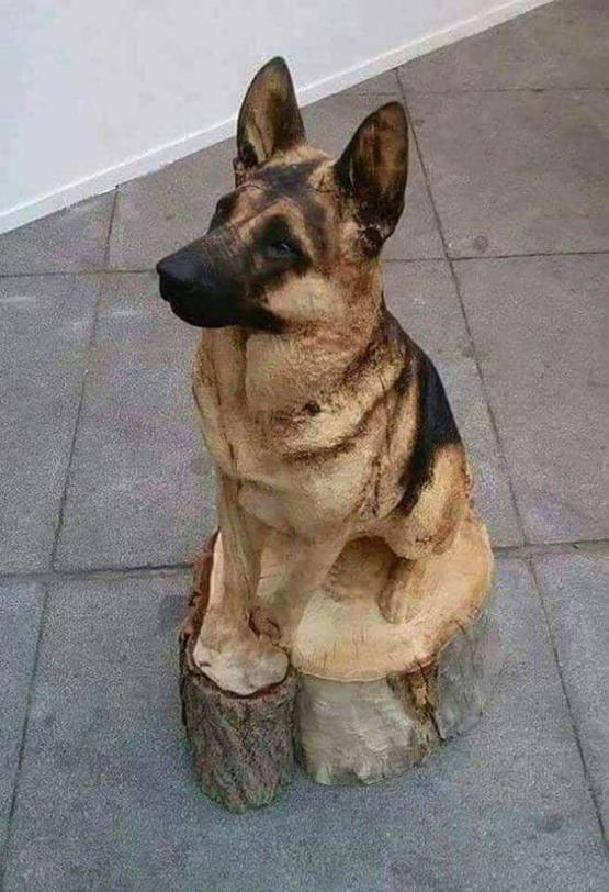 Carved from a tree trunk