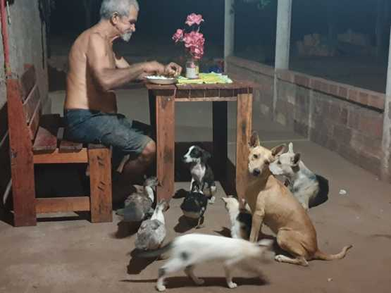 My grandpa with his followers - Trending on Reddit