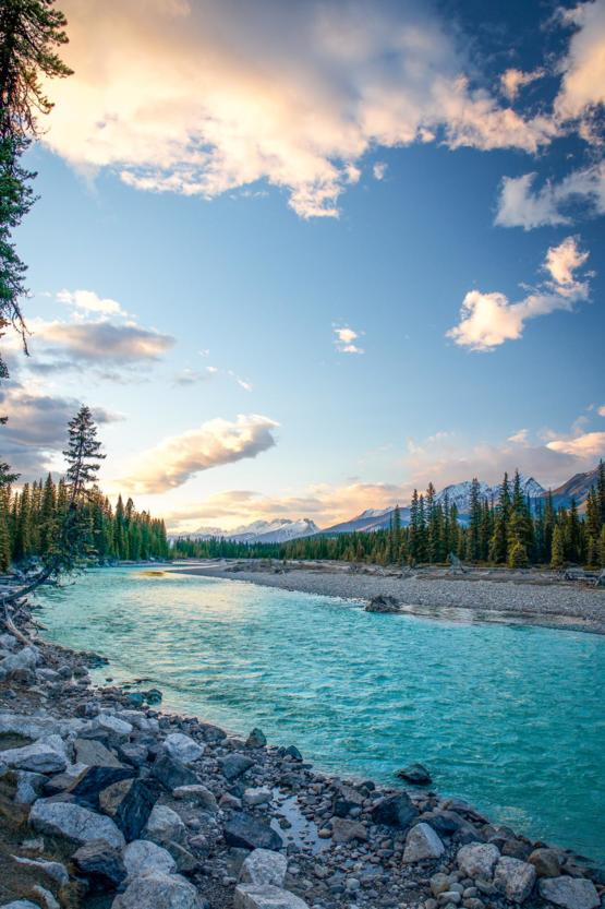Yes, the water was really that blue. ( Kootenay River, 50 Miles West of Banff, AB )