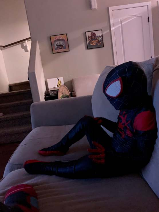 Got my son a new Spider-Man costume last night. He woke me up an hour early today to wear it and watch cartoons this morning. Love this little dude.