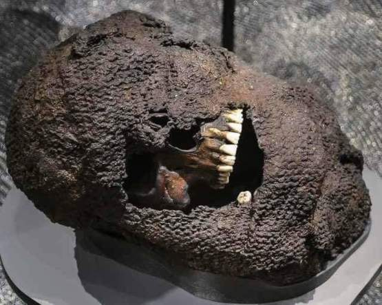 A skull still in chainmail from the battle of Visby, 1361.