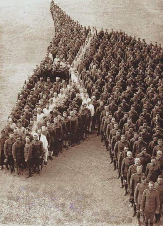 Soldiers paying tribute to the 8 million horses, mules, and donkeys lost in WWI