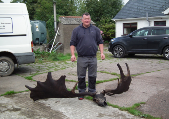The 10,000 year old skull of an extinct Giant Irish elk found by a fisherman