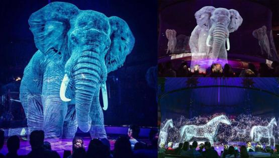 Circus Roncalli in Germany using holograms instead of real animals. Looks amazing and cruelty free.