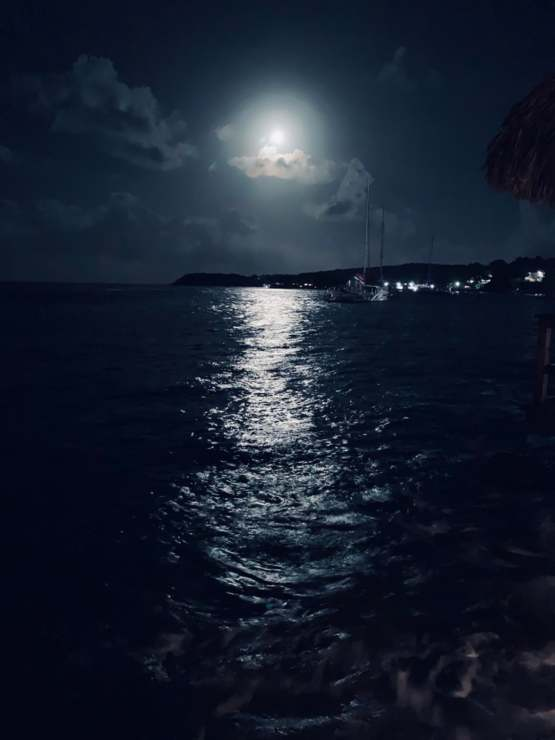 A photo I took of the moon above the ocean in Jamaica on the last night of my honeymoon.