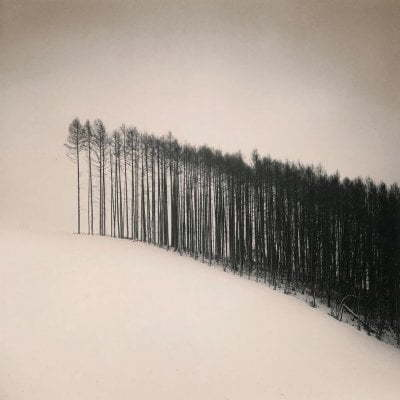 This is so amazing - Forest Edge fot. Michael Kenna