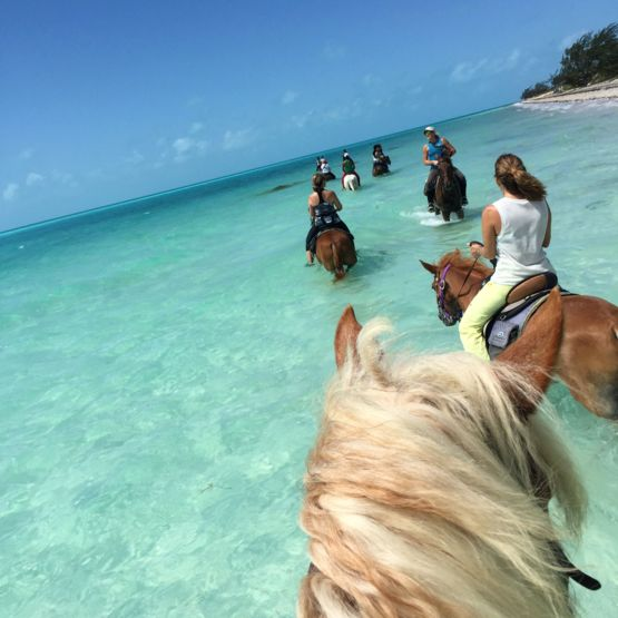 Horse riding at the Caribbean island of Turks & Caicos