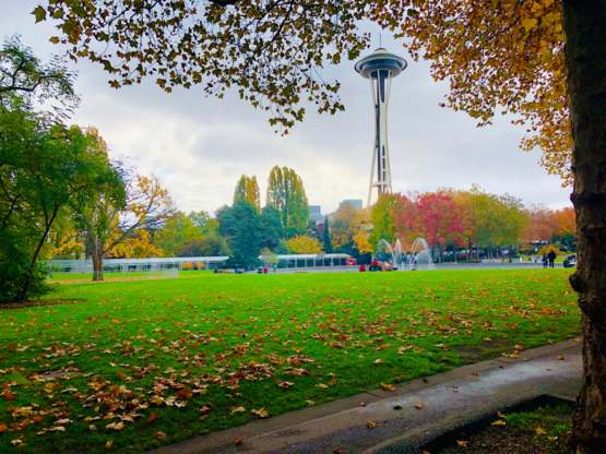 My favorite picture I've ever taken. October in Seattle.