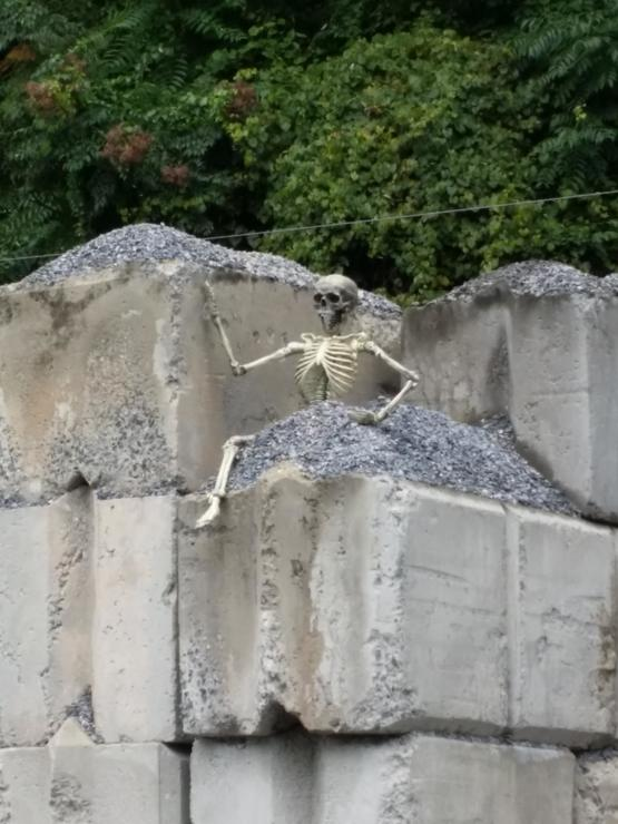 Found a fake skeleton in a dump truck load of stone. I've been calling him Jimmy