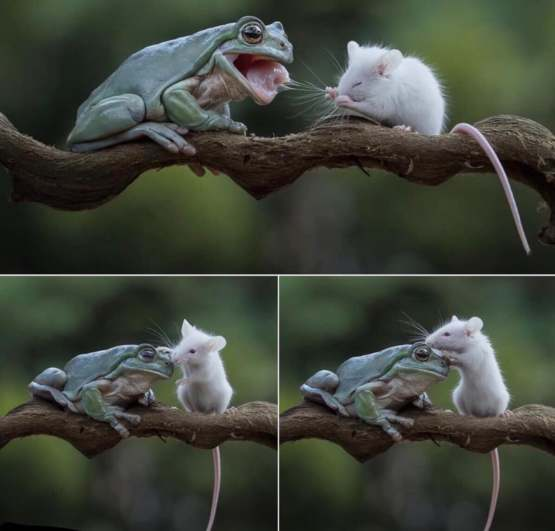 The frog and mouse became friend