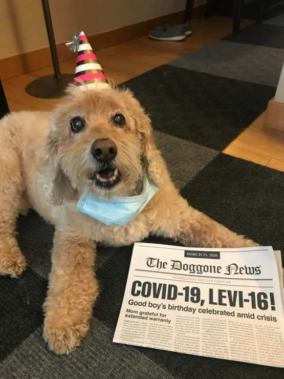 Happy 16th Birthday, Levi! So glad you've outlived your warranty!