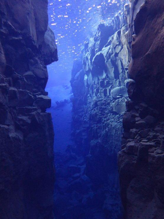 My sister took this when she went scuba diving near Iceland!