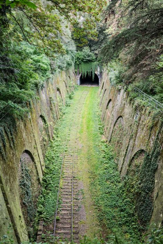 Railway Tunnel reclaimed by Nature