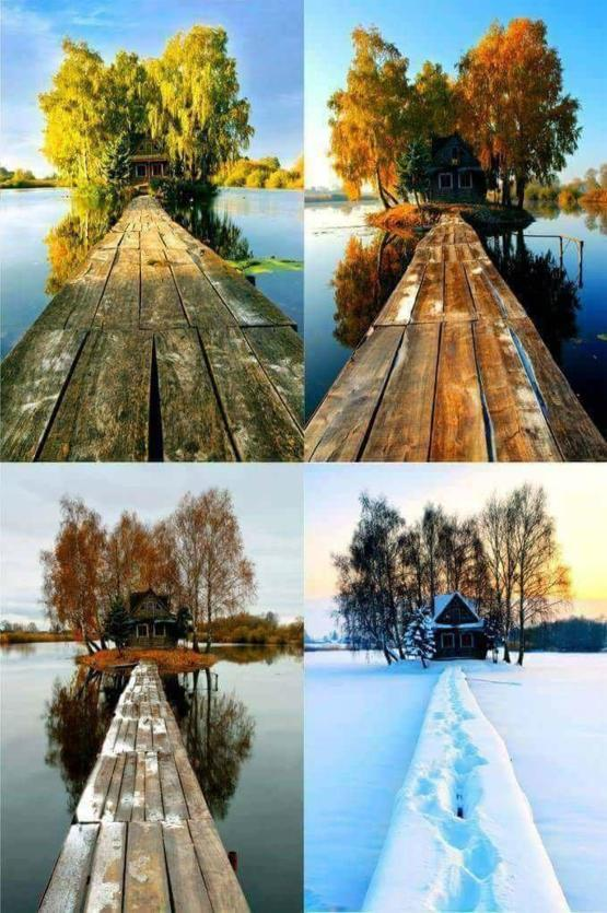 A shack in four different seasons.