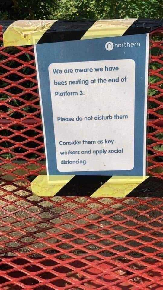Sign at a local train station.