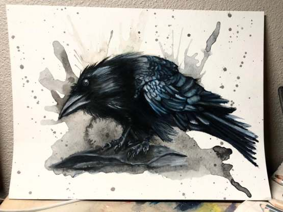 This raven I drew. I wanted him to have a quizzical look.