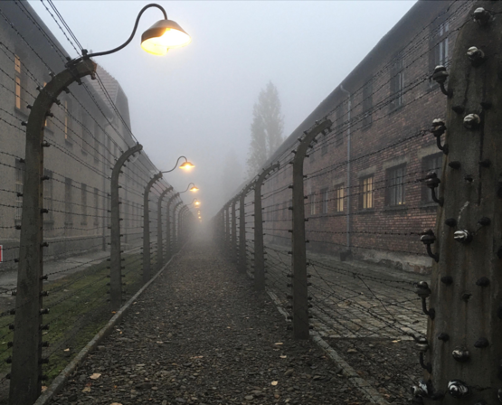 Auschwitz was liberated on January 27, 1945. [OC]