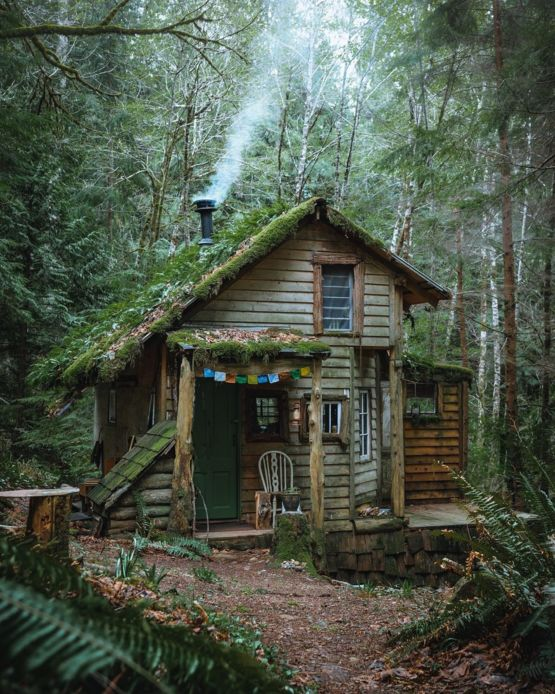 This Cabin In The Woods