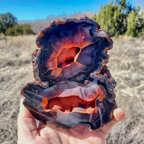This exotic agate