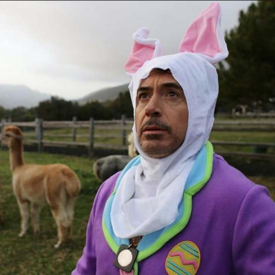 Robert Downey Jr dressed in his birthday suit
