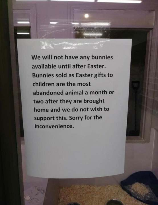 A sign outside a pet store disallowing the sale of bunnies until after Easter