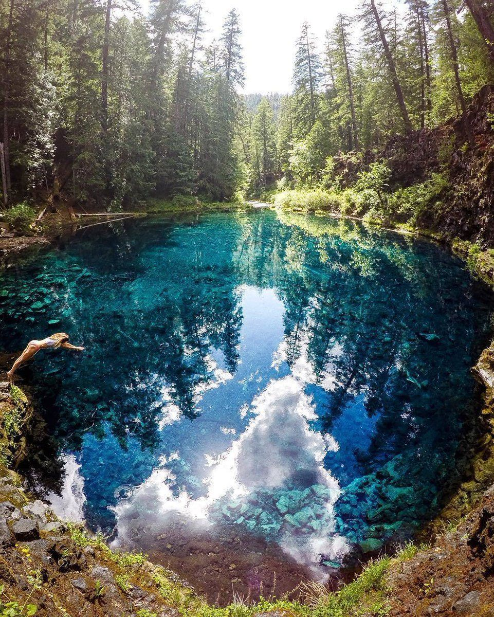 Jump in! Tamolitch Blue Pool, Oregon | Photo by Quin