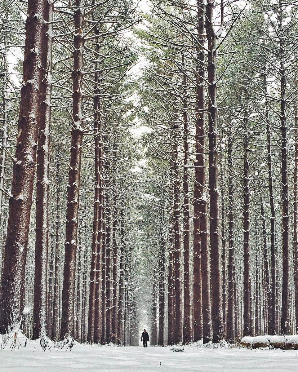 Winter walks at Oak Openings Preserve Metropark. | Photo by Eric Ward