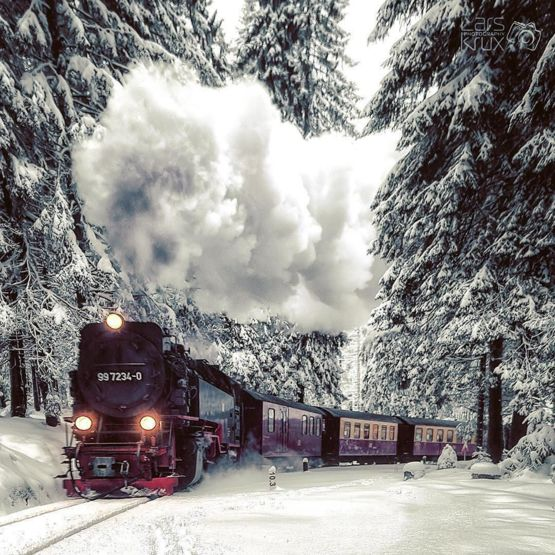 Travel the Harz Mountains on one of the last steam trains